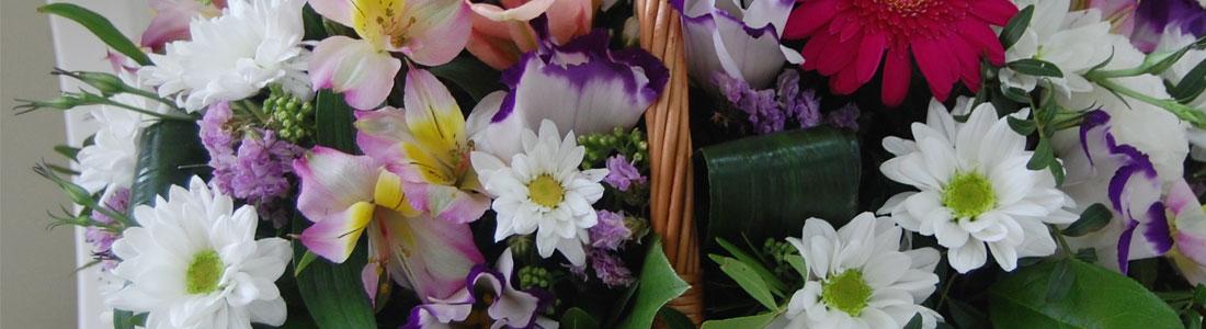 cvety-v-podarok